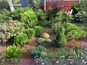 Ландшафтний дизайн Озеленення Декор у садку