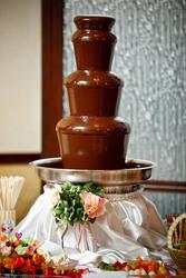 Аренда шоколадных фонтанов Луцк