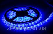 Гибкая светодиодная лента 3528/60 12v 5м. Синий цвет