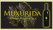 Пропонуємо італійське вино високої якості